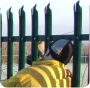 Industrial steel palisade fencing.