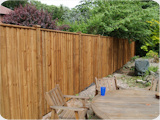 Feather edge closeboard fencing at a height of 6ft
